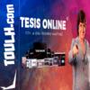 Tesis Online - Rosario Martínez